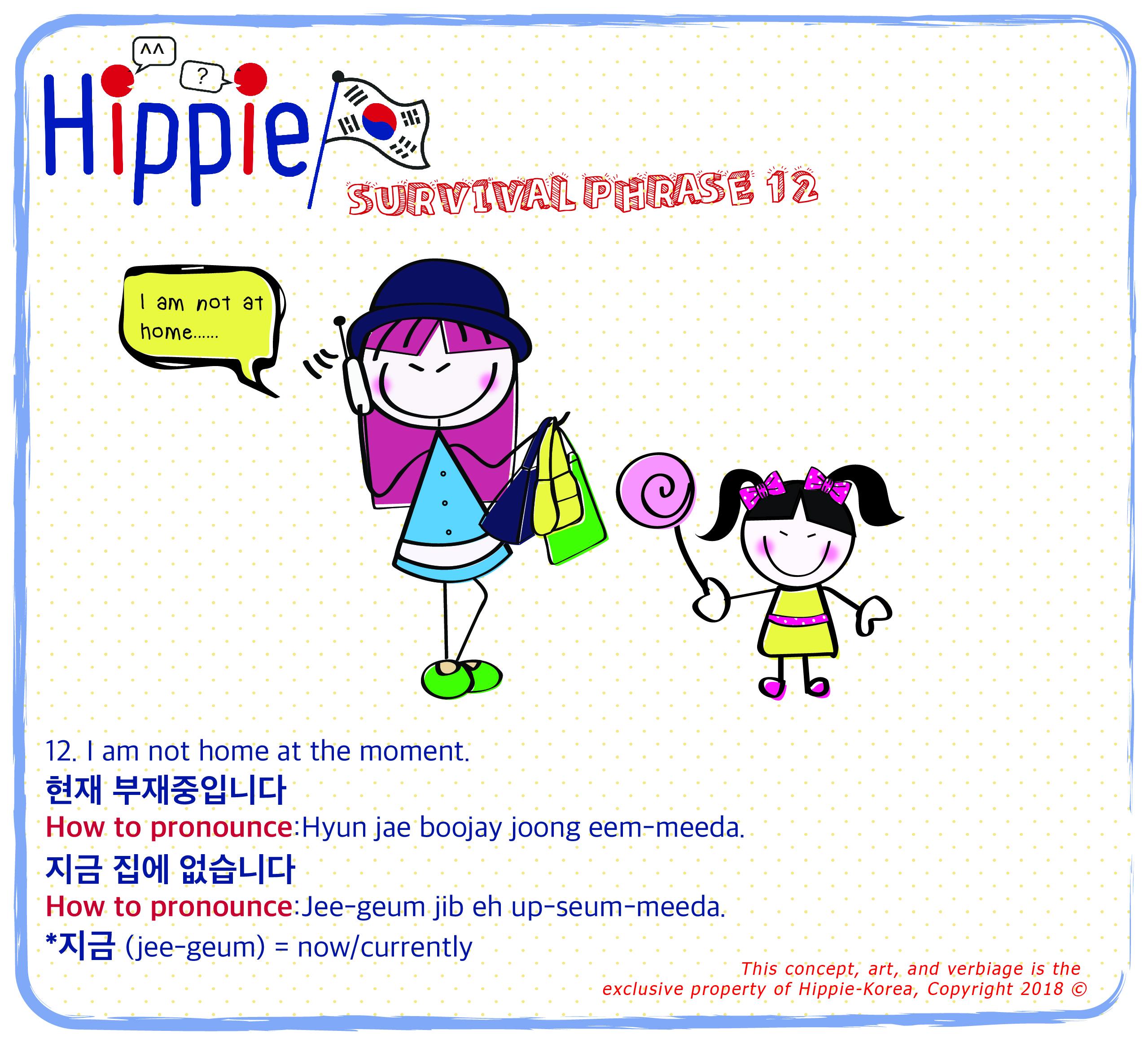Survival Phrases 101 I Am Not At Home Hippie Korea